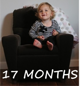 17 Months Old